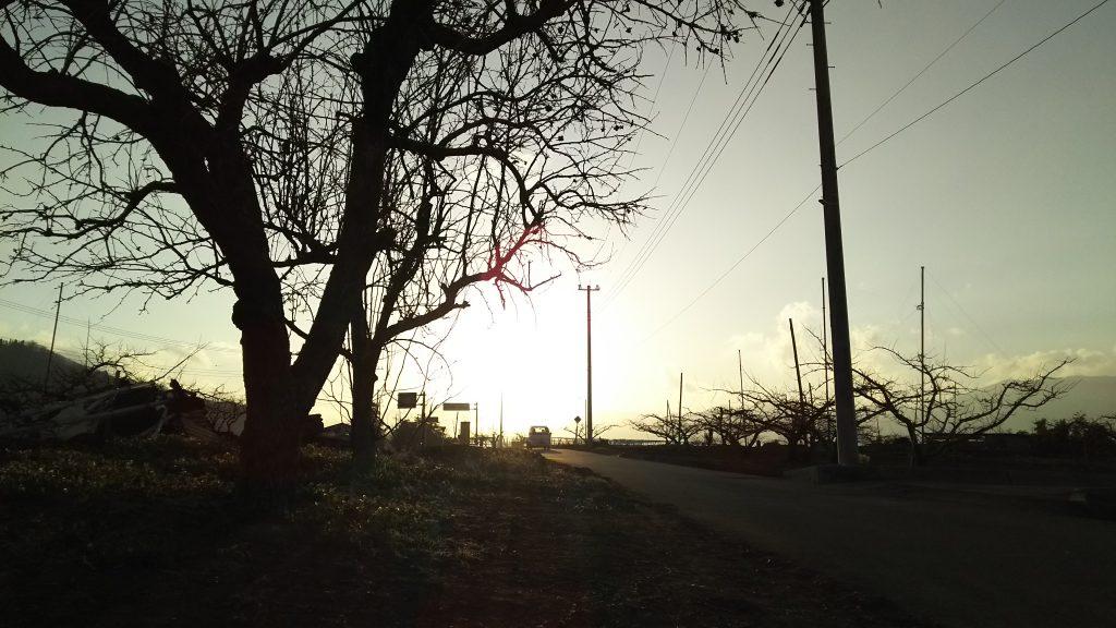 夕陽に映える「軽トラック」
